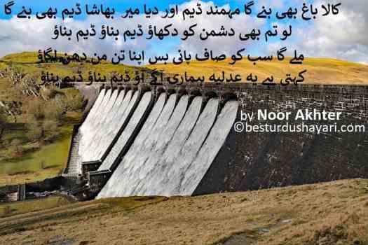 Fund Raising for Diamer-Bhasha dam