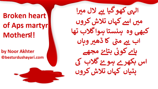 poetry on aps matyrs