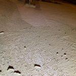 Verregende betonvloer herstellen in Arnhem en Amsterdam