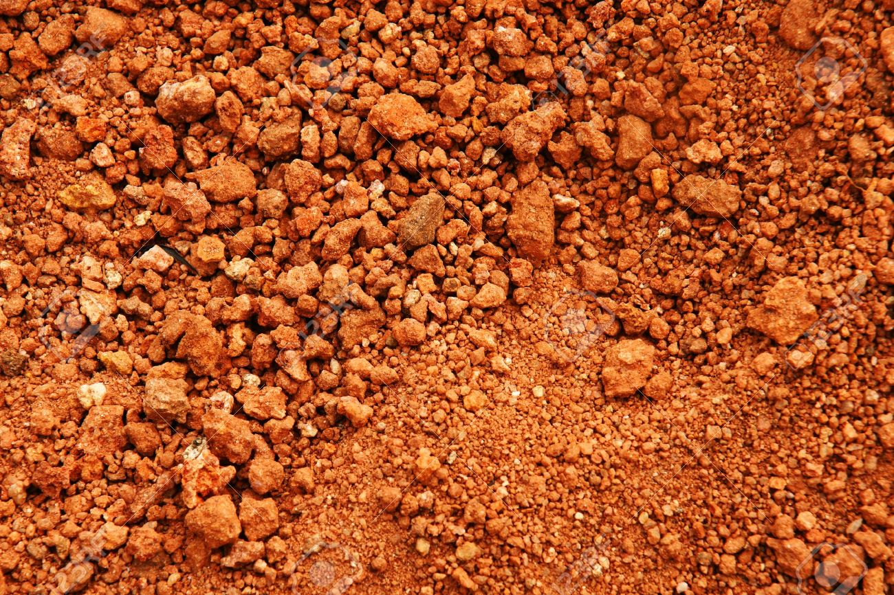 8 Different Types Of Soil Found In India