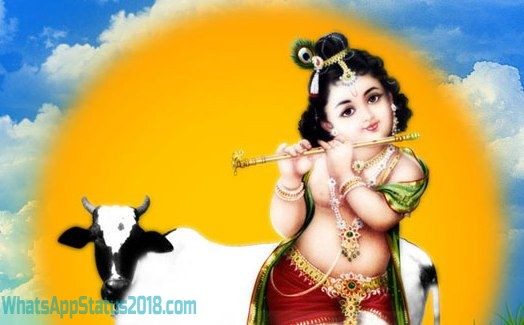 Janmashtami Images, Photos and Wallpapers