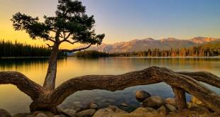 Nature Hd Wallpapers Archives Best World Events