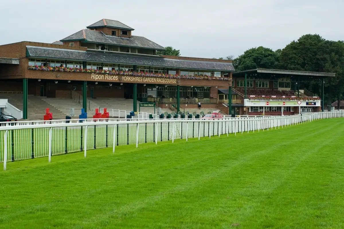 How Does The Racecourse Going Impact A Horses Chance Of Winning?