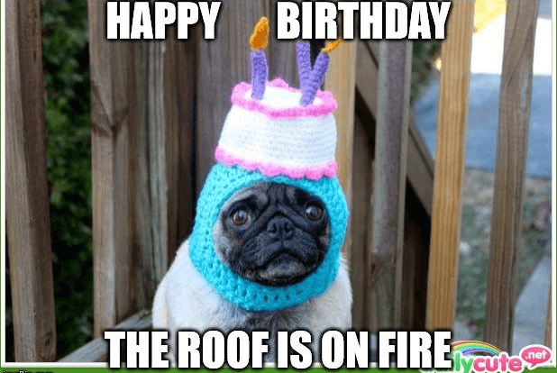 happy birthday the roof is on fire