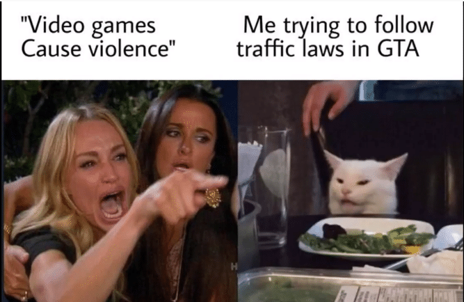 Woman Yelling at cat gta video game memes