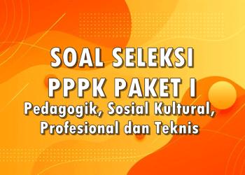 Download Soal Seleksi PPPK Paket 1 Pedagogik, Sosial Kultural, Profesional dan Teknis