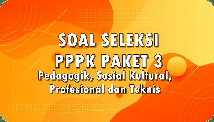 Download Soal Seleksi PPPK Paket 3 Pedagogik, Sosial Kultural, Profesional dan Teknis