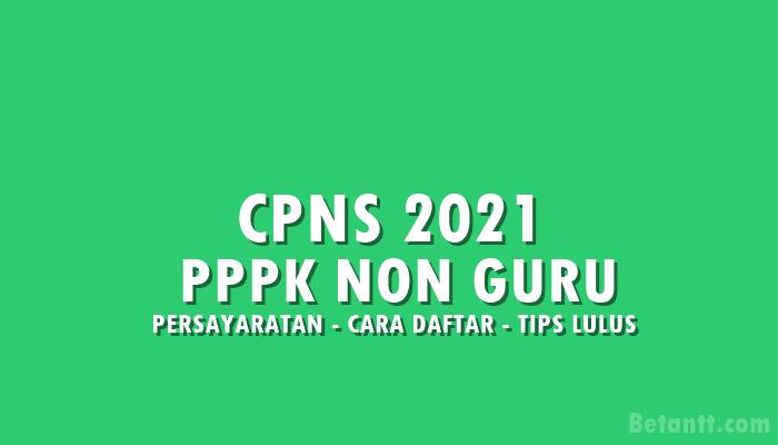 Alur Sistem Seleksi CPNS 2021 untuk PPPK Non Guru