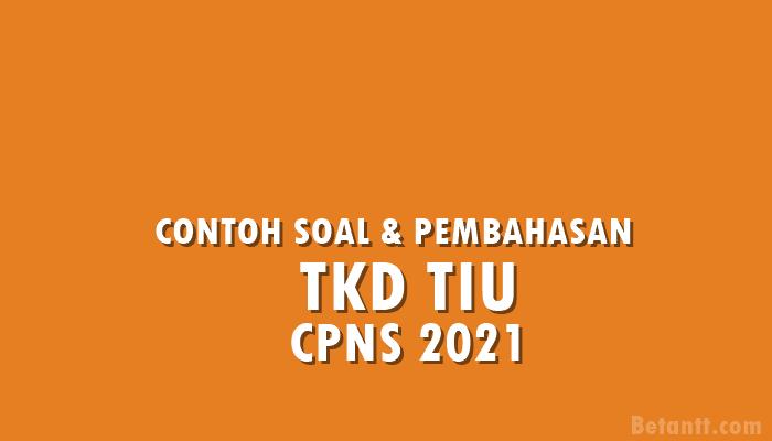 Contoh Soal dan Pembahasan Tes CPNS 2021 TKD TIU