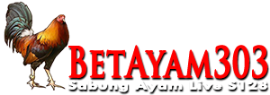 BetAyam303.Co