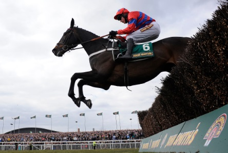 Queen Mother Champion Chase Betting Cheltenham Festival