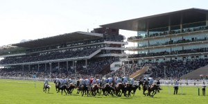 Cheltenham New Customer Offers and free bets
