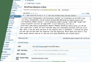 WordPress user interface