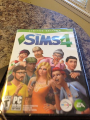 Sims 4 video game