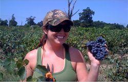 Fairhaven Vineyards