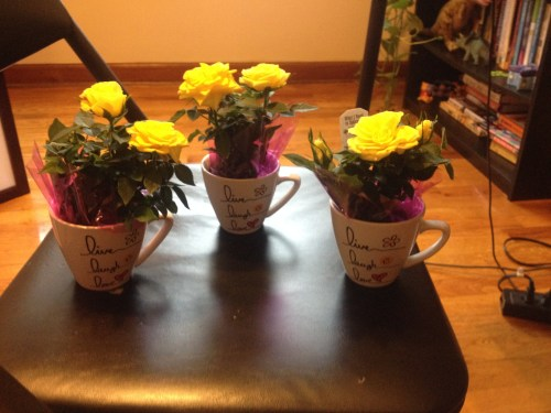 Pretty yellow roses I gave our daughters