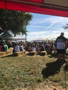Crowd listening to bluegrass
