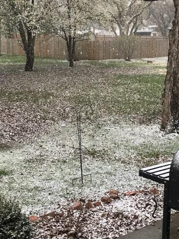 Snow in spring in Missouri