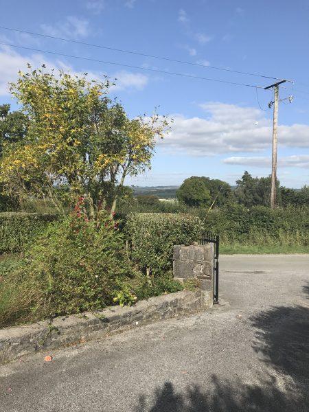 Driveway at Kilkenny B & B