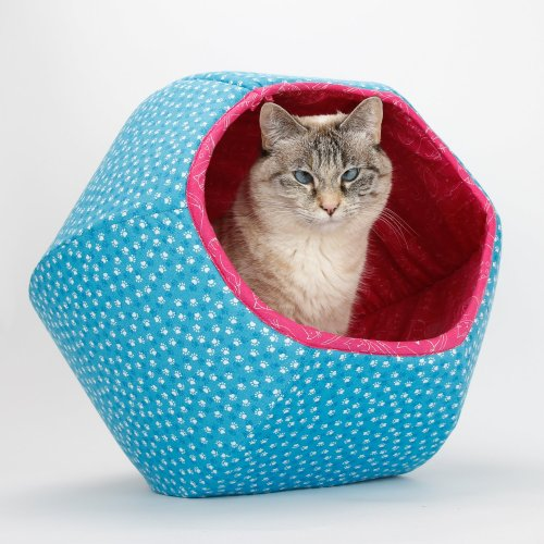 The Cat Ball