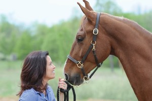 Equine Therapy Source: McCaskill Family Services, Michigan