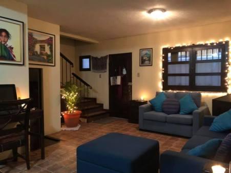 Living room with Christmas lights