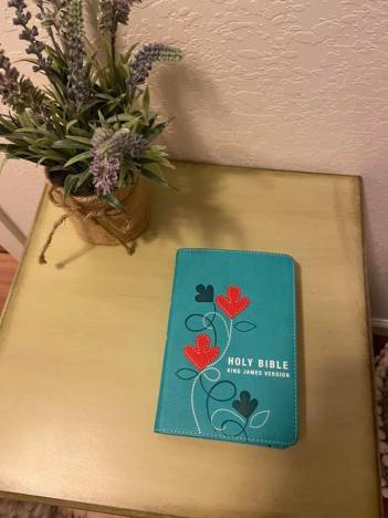 my pretty travel Bible