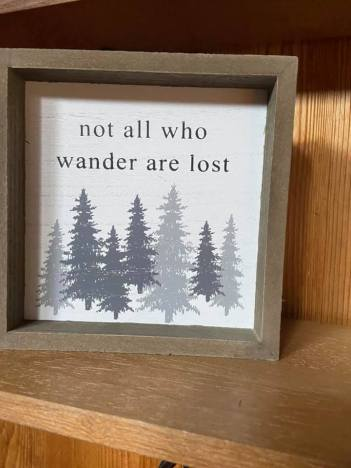 Not all who wander are lost pic