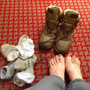 Tweet: All I need is what I learned on the Camino. I am t…