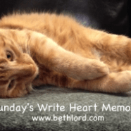Tweet: A Simple Sunday #WriteHeartMemory http://t.co/SfBq…