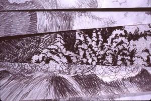 Mt. St. Helen's etching detail