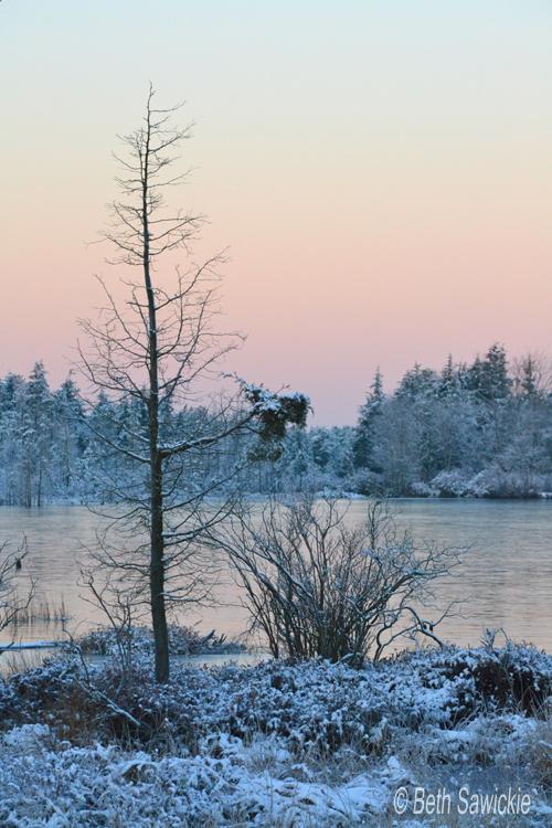 """photo by Beth Sawickie - www.BethSawickie.com """"A Peaceful Winters Morn"""""""