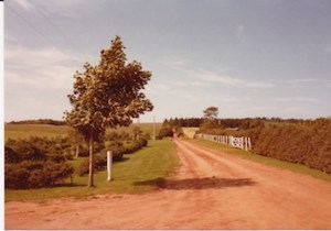 A red Island road, PEI, August 1982