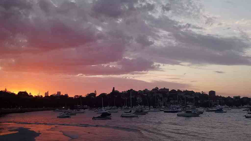 Rose Bay sunset