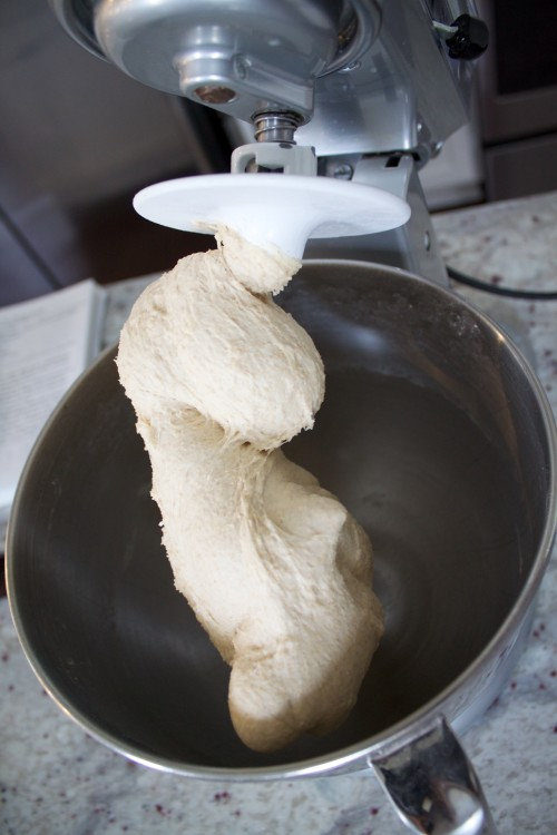 dough on the dough hook for homemade pizza