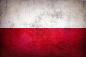 Polish translation services
