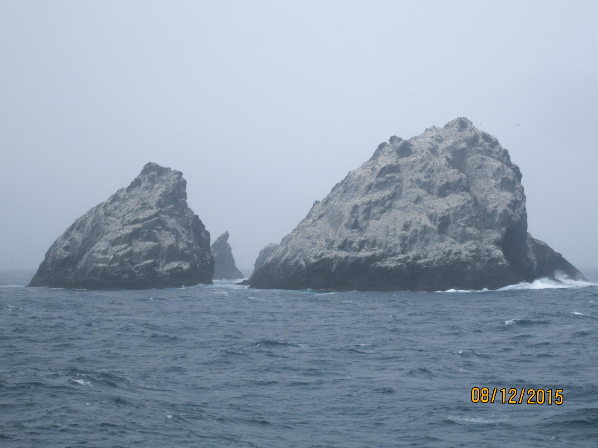 Felsen vor Süd-Georgien