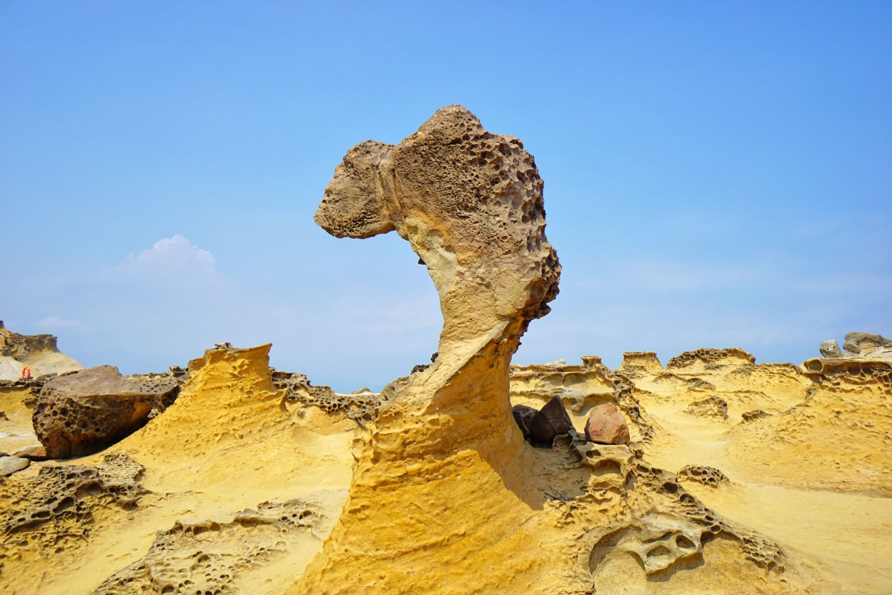 Der Princess Head im Yehliu Geopark