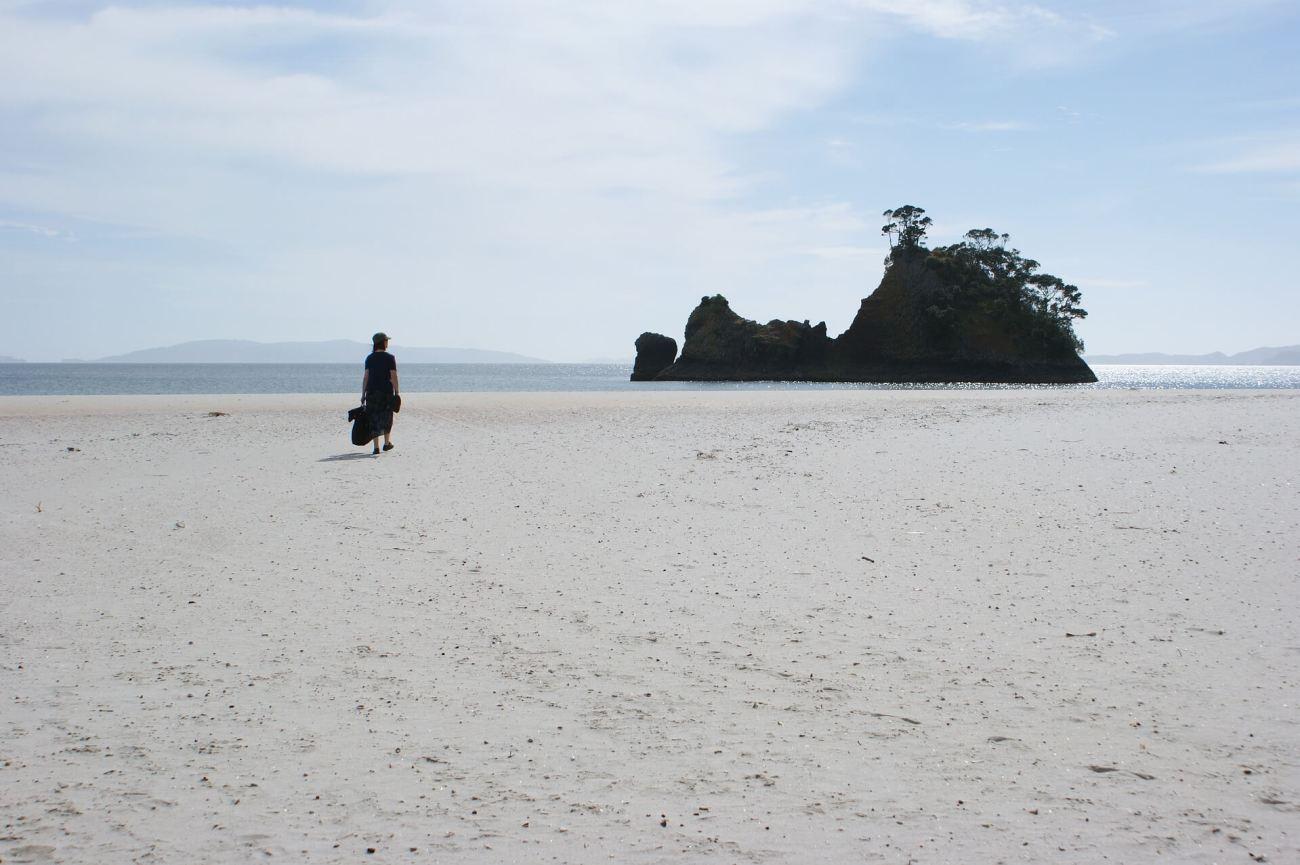 Coromandel Island Neu Seeland