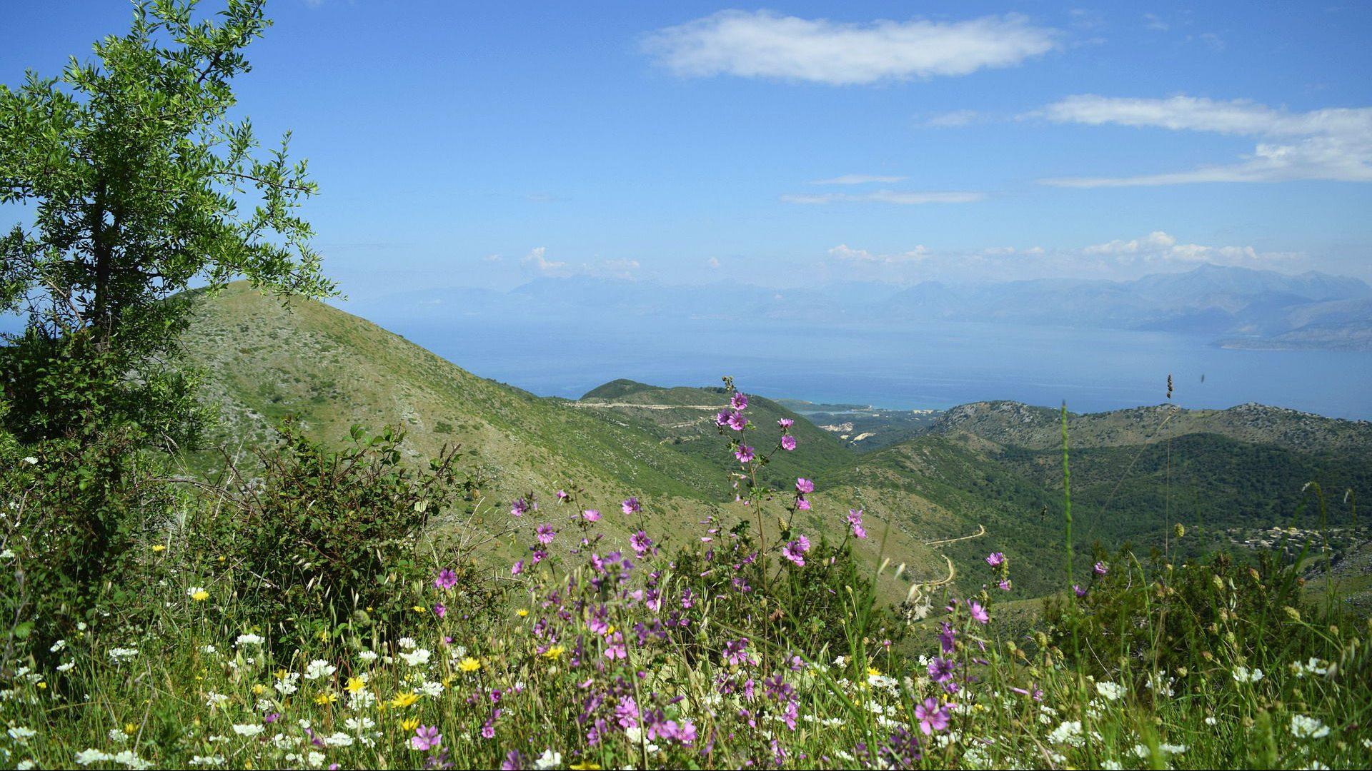 Die grüne Landschaft auf Korfu