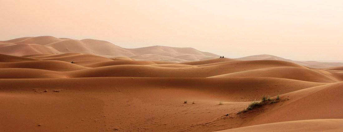 Dünenlandschaft der Sahara