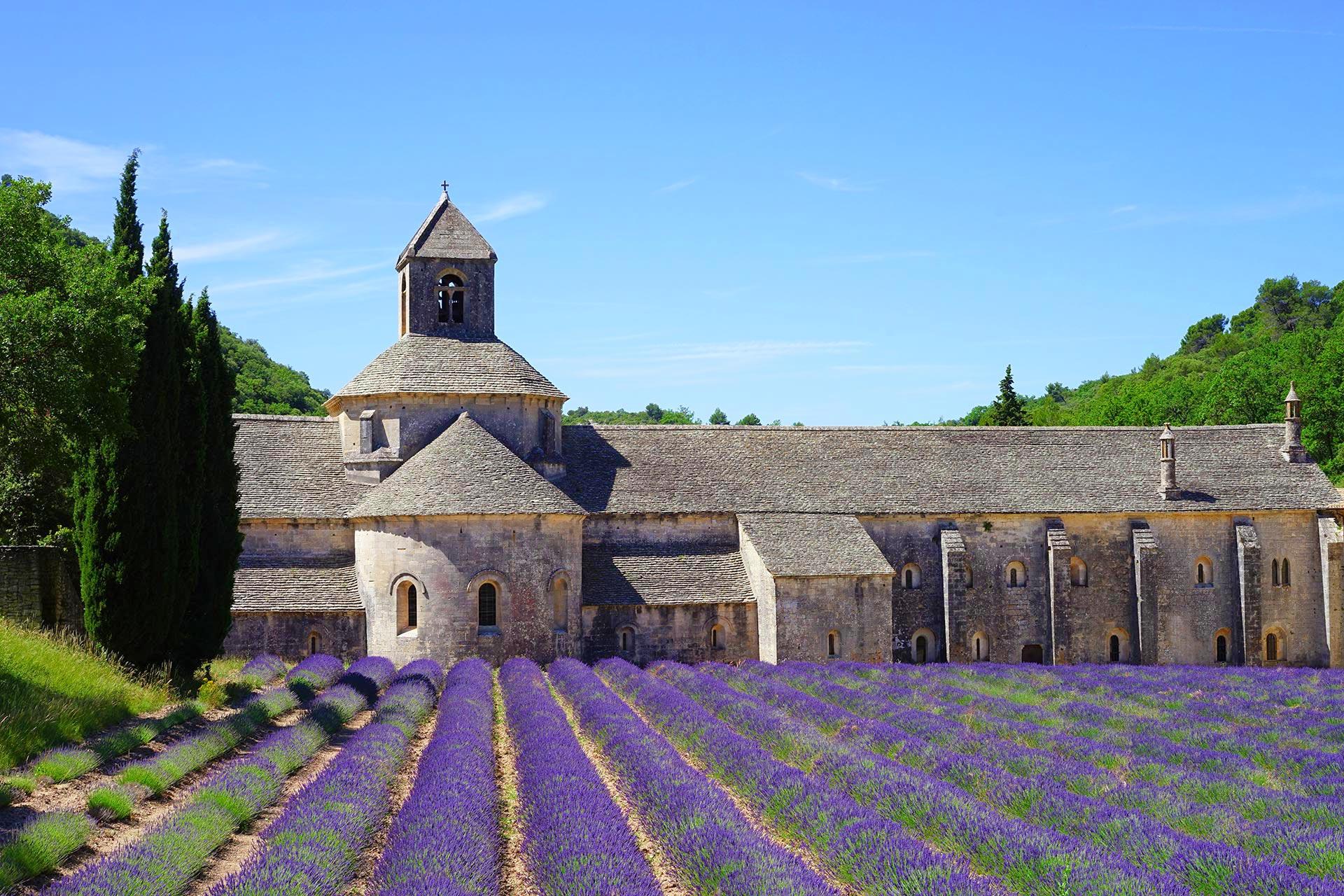 Kloster Senanque im Lavendelfeld