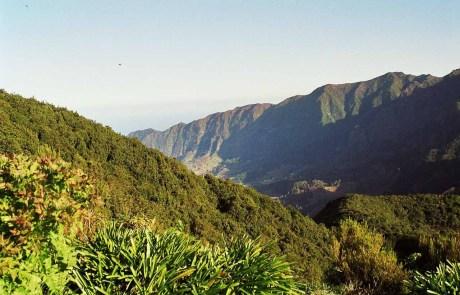 Landschaft von Madeira