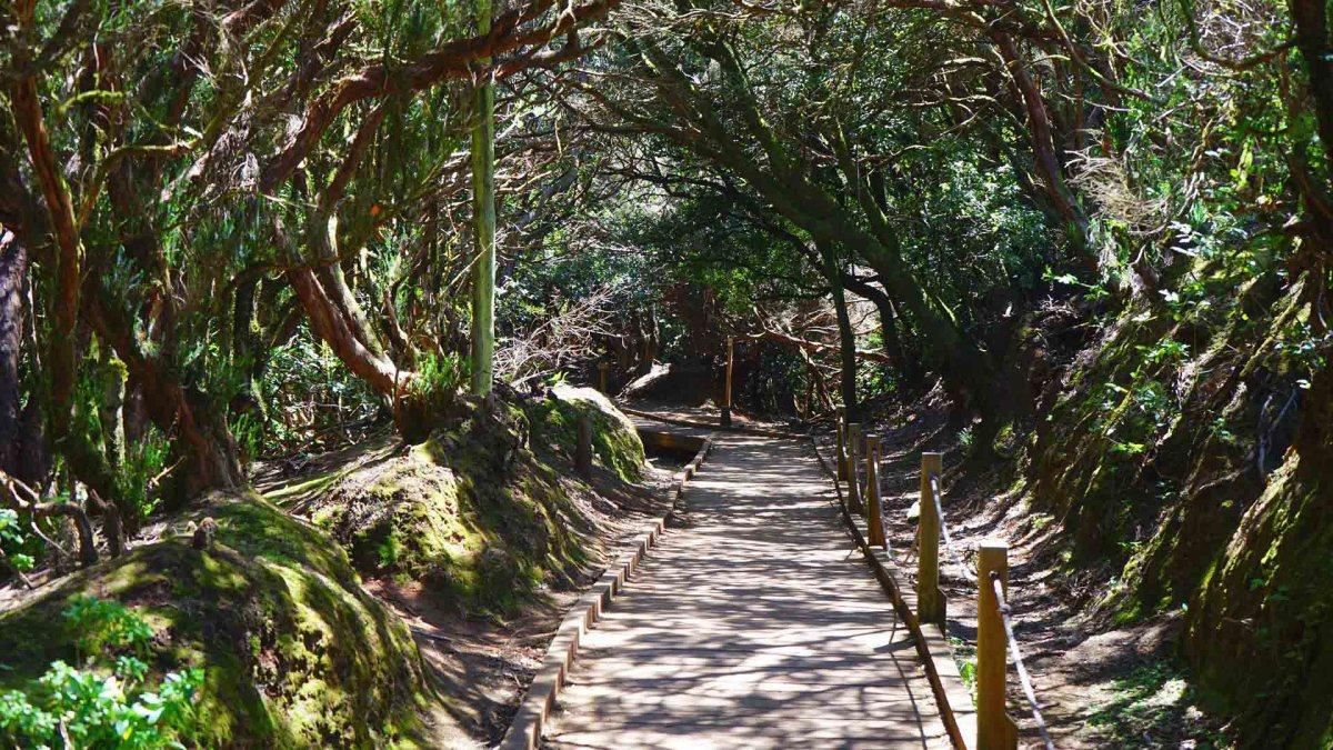 Barranco del Infierno, Trail