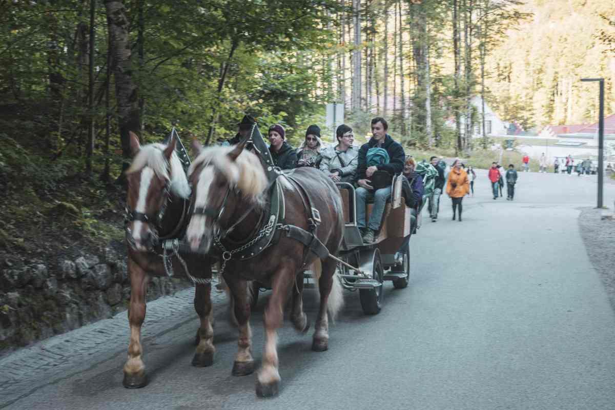 Touristen aus allen Ländern vor dem Schloss Neuschwanstein