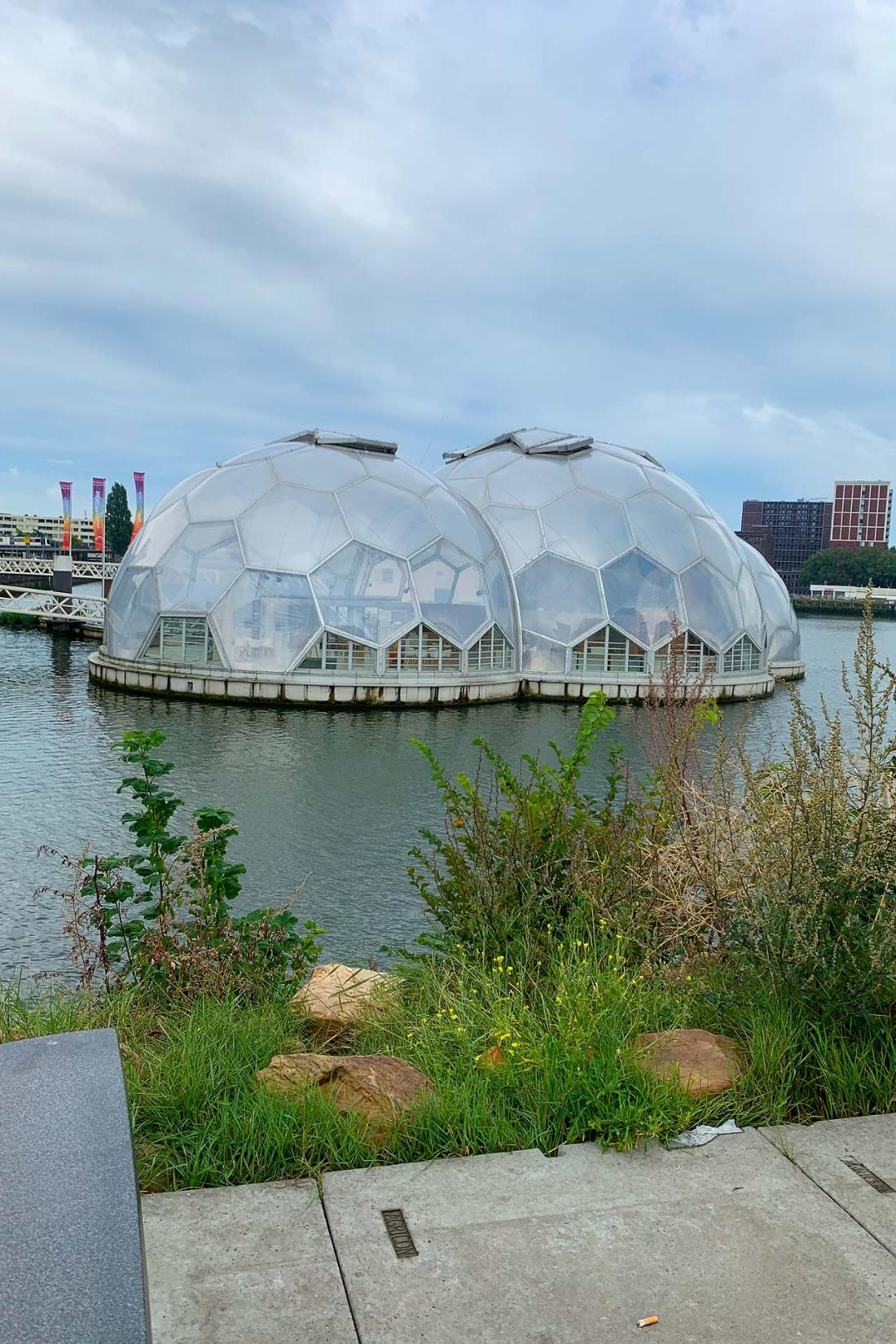 Floating Pavilion
