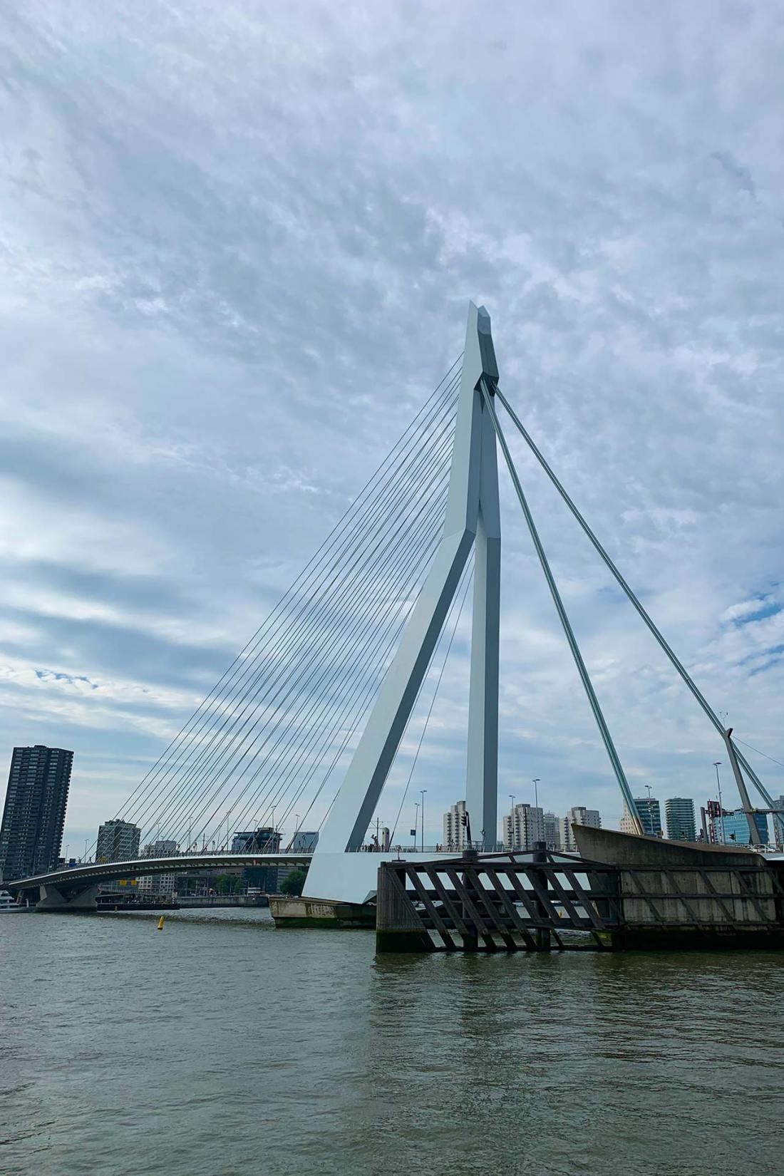 Erasmusbrücke