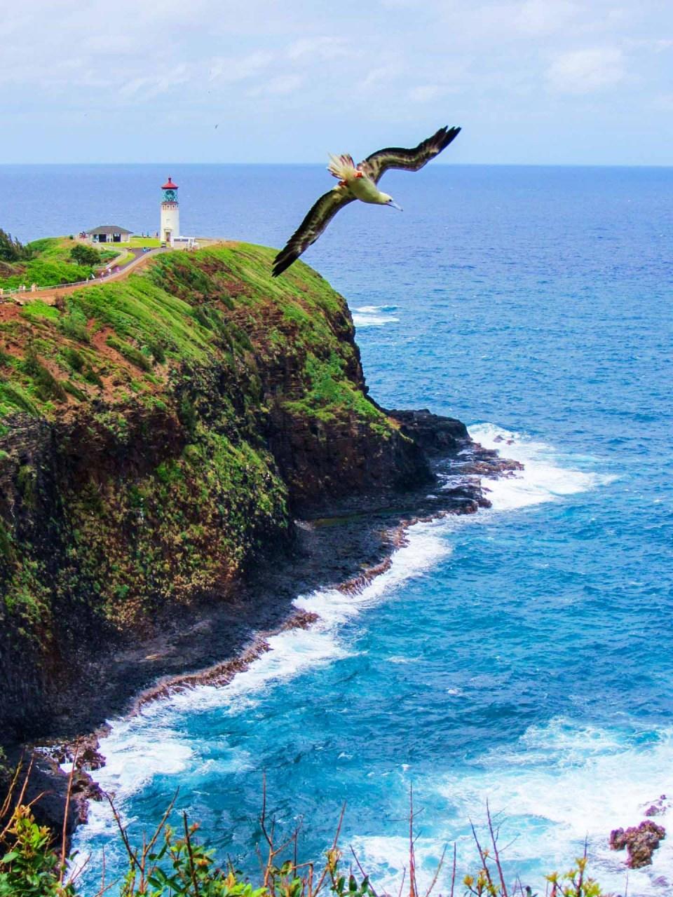 Kailauea Lighthouse