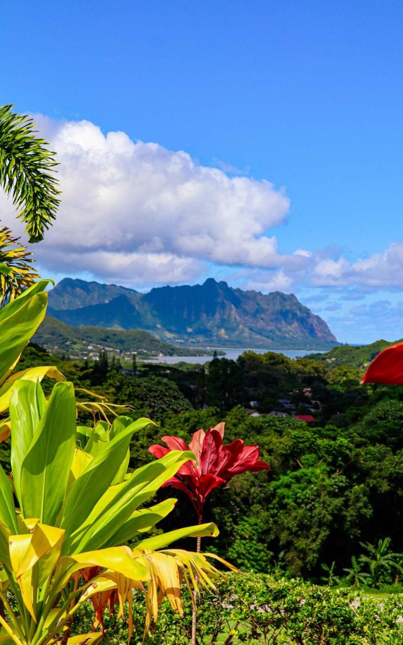 Kauai Küstenlandschaft