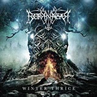 Borknagar-WinterThrice-2016-Cover